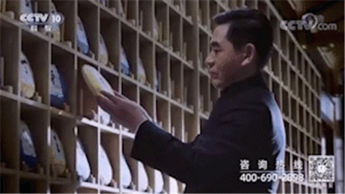 理想龙润茶登陆CCTV2、9、10、13、15五大频道,展现云茶魅力